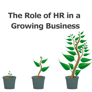 5 Key Areas HR Affects In A High-Growth SME